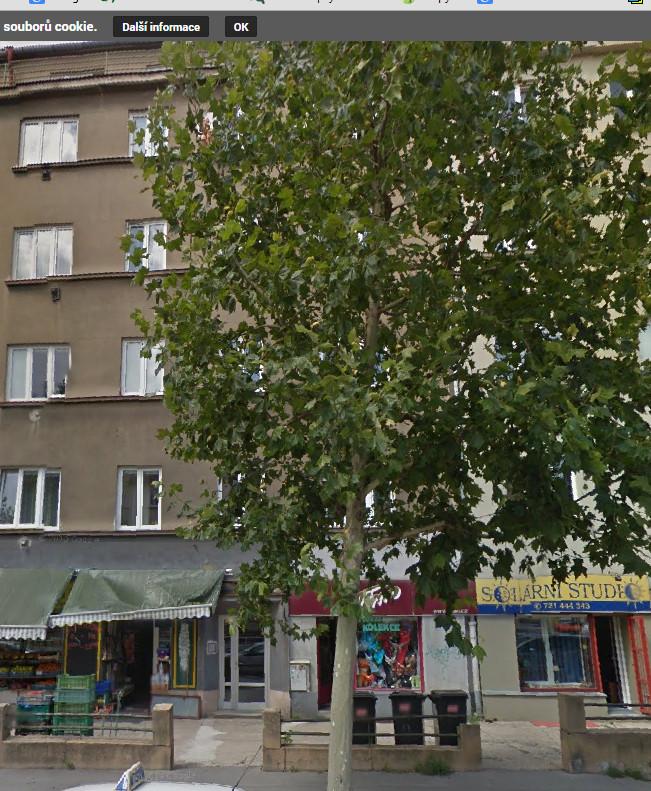 Bytové bružstvo Koněvova 171